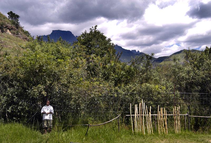 Ett barn tar skydd i skuggan i Drakensberg. Foto: Jurek Holzer/SvD